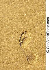 orma, sabbia