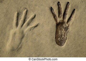 orma, su, uno, sabbia