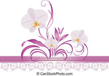 ornament., frontière, orchidées
