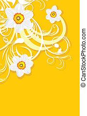 Ornamental background with daffodil
