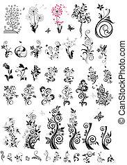 ornamental, blomstret konstruktion, elementer, (