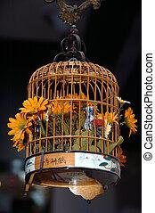 ornamental, enjaule pájaro, flowers3