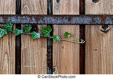 Ornamental fence made of planks 4