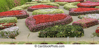 Ornamental flower garden