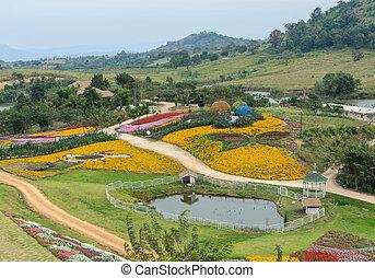 Ornamental flower garden
