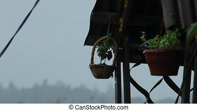 ornamental flower pot on a gazebo video 4k.