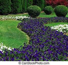 Ornamental garden. Group of trees and bushes. Summer.