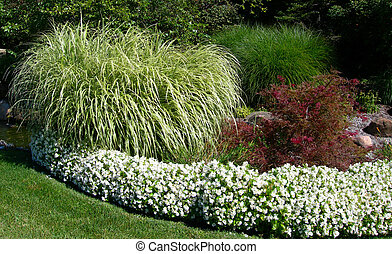 Formal garden landscape with green lush ornamental grass and white flower beds