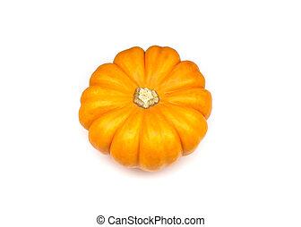 Ornamental miniature pumpkin