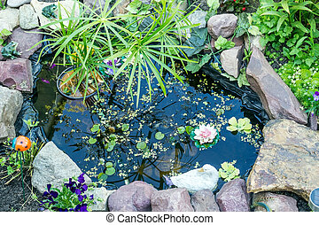 Ornamental pond in the garden