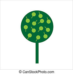 Ornamental tree with green leaves on white background