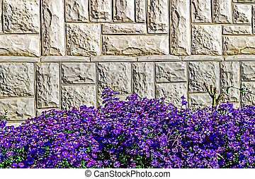 Ornamental wall 4