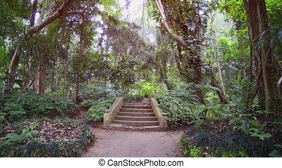 Ornate Concrete Steps in a Tropical Botanical Garden - Paved...