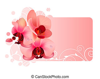 Ornate frame with orchid pink flowers
