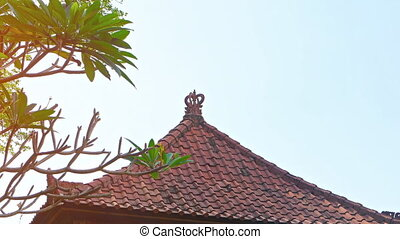 Ornate Roof atop a Building in Bali, Indonesia. 1080p FullHD footage
