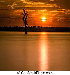 oro, alba, lago