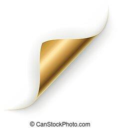 oro, pagina, vettore, angolo, riccio, template.