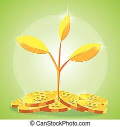 oro, vettore, albero, cartone animato, moneta