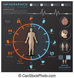 orologio, medico, infocharts, infographic, salute, biologico