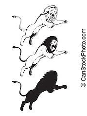 oroszlán, támad