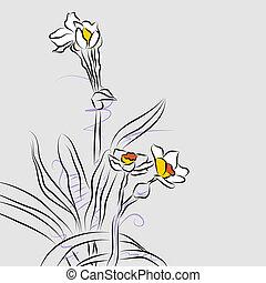 orquídea, floreza arreglo, dibujo lineal
