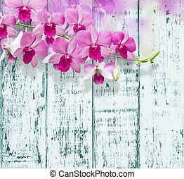 orquídeas, en, madera