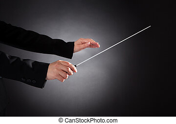 orquestra, femininas, condutor, batuta