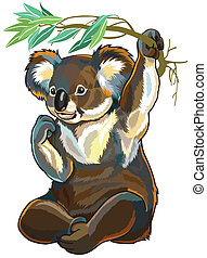 orso koala