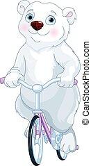 orso polare, andando bicicletta bicicletta