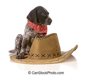 ország, kutya