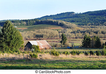 ország, vidéki, istálló, tanya