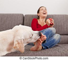 orteils, chien, lécher