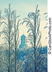 orthodox, landschaftsbild, kirche, winter, christ