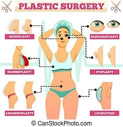 orthogonal, plástico, organigrama, cirugía