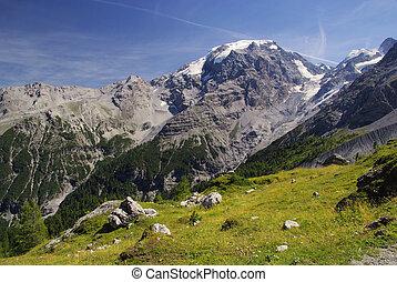 Ortler Alps 17