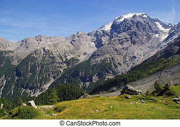 Ortler Alps 18