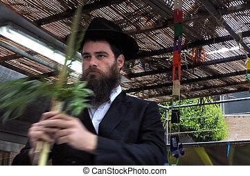 ortodoxo, judeu, rabino, bênção, quatro, sukkah, espécie