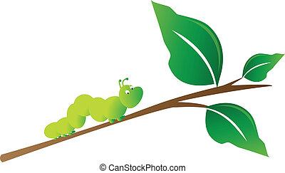 oruga, en, rama de árbol