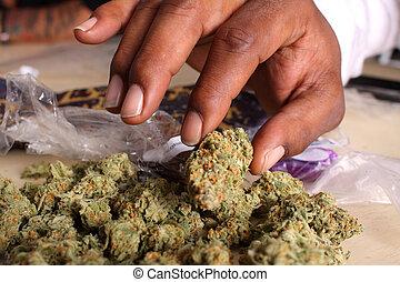 orvosi, cölöp, marihuána