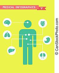 orvosi, infographic.