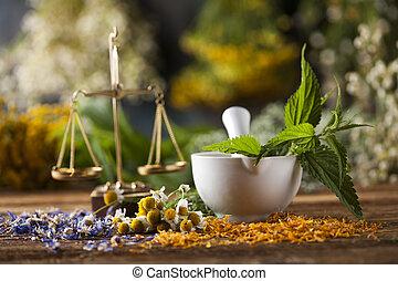 orvosság, orvoslás, természetes, választás, habarcs