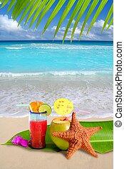 orzech kokosowy, czerwony, cocktail, z, rozgwiazda, w, tropikalna plaża