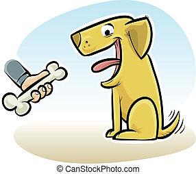 os chien
