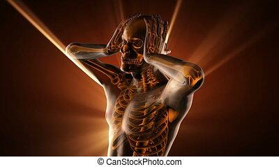os, radiographic, balayage, humain