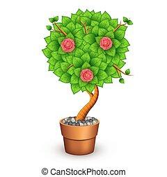 osamocený, strom, s, květiny, do, hlína zajistit