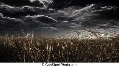 oscuridad, abstracted, campo, y, cielo
