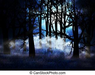oscuridad, brumoso, bosque