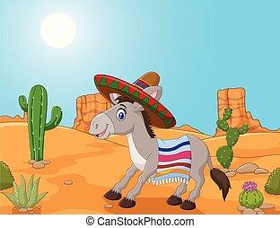 osioł, chodząc, meksykanin, sombrero