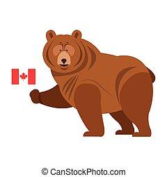 oso pardo, icono, bandera, beare, canadiense