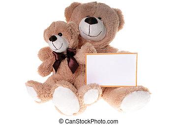 osos, teddy